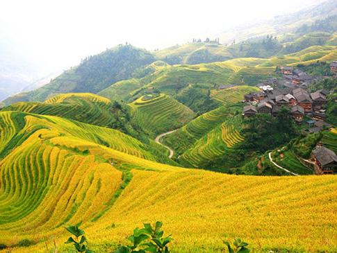 桂林龙脊平安寨